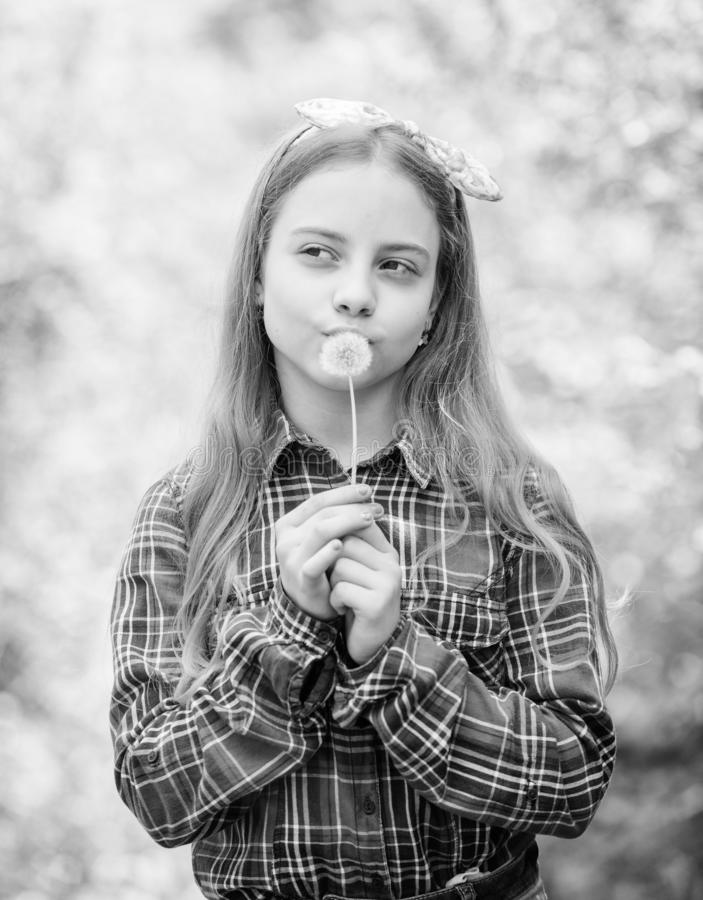 Summer vacation. Rancho and country. Natural beauty. Childhood happiness. happy child hold blowball. little girl and stock photography