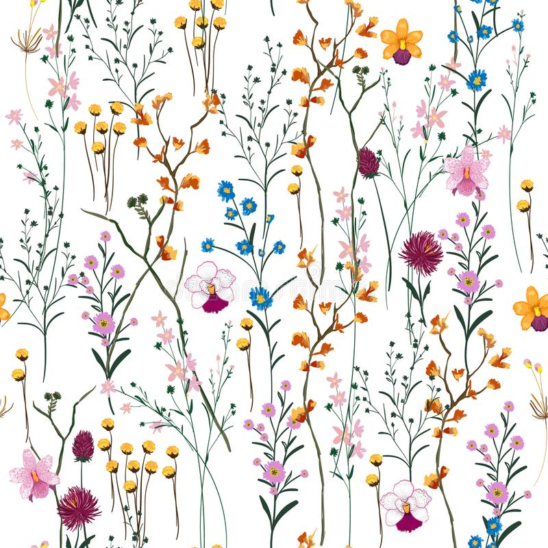 Summer Vector many kind of wild flowers seamless beautiful on white color background, vector illustration