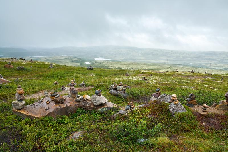 The summer vegetation in the mountain tundra, Kola Peninsula,. Russia stock photo