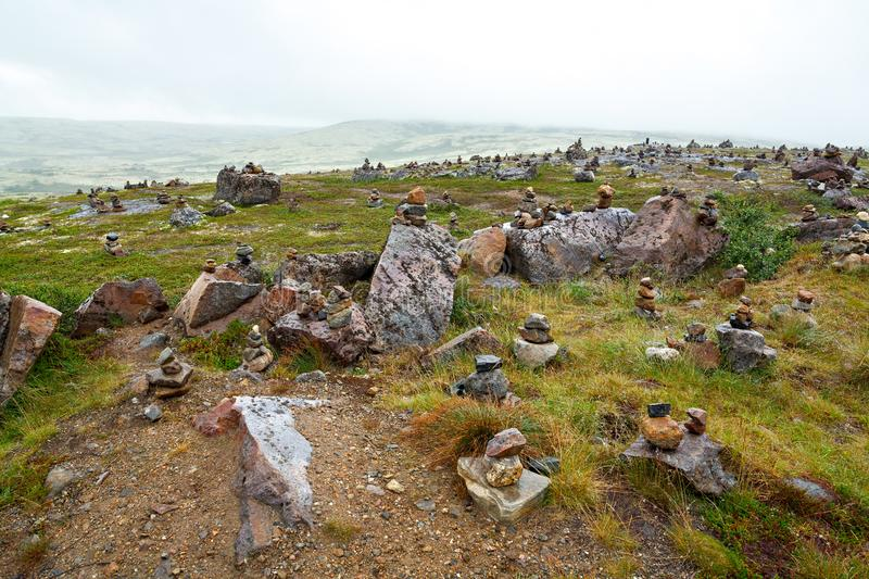 The summer vegetation in mountain tundra, Kola Peninsula,. The summer vegetation in the mountain tundra, Kola Peninsula, Russia royalty free stock photos