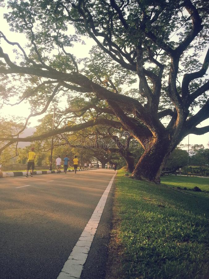 Summer view of Taiping, Malaysia. Summer, view, taiping, malaysia, one royalty free stock photos