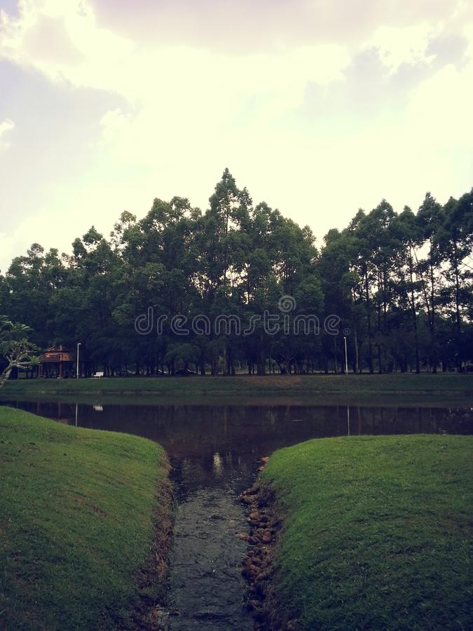 The Summer view of Taiping, Malaysia. Summer view of Taiping, Malaysia.. One stock photos