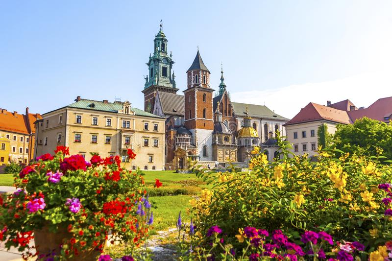 Summer view of Wawel Royal Castle complex in Krakow, Poland. It is the most historically and culturally important site in Poland. Flowers on a foreground royalty free stock images