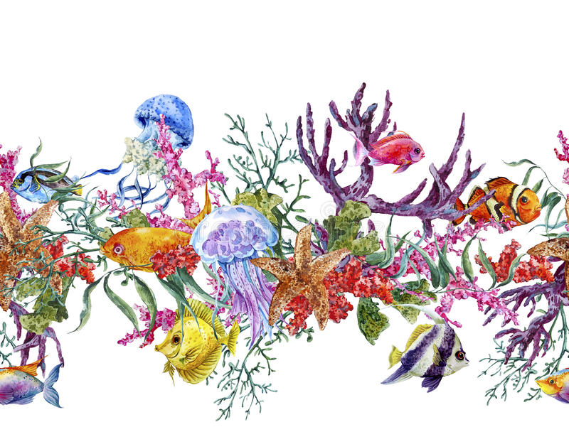 Summer Vintage Watercolor Sea Life Seamless Border. With Seaweed Starfish Coral Algae, Jellyfish and Fish, Underwater Watercolor illustration royalty free stock image