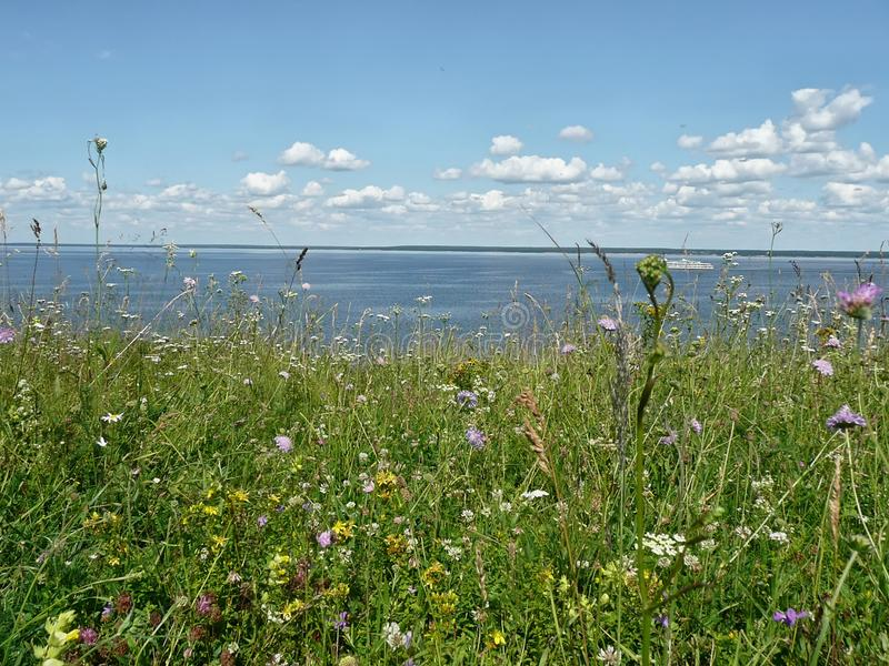 Summer on Volga stock photography
