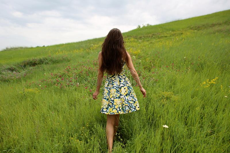 Summer walk on a green ravine, a young slim pretty girl with long brown hair in a yellow dress sundress, enjoys life. On the field with summer flowers royalty free stock photos