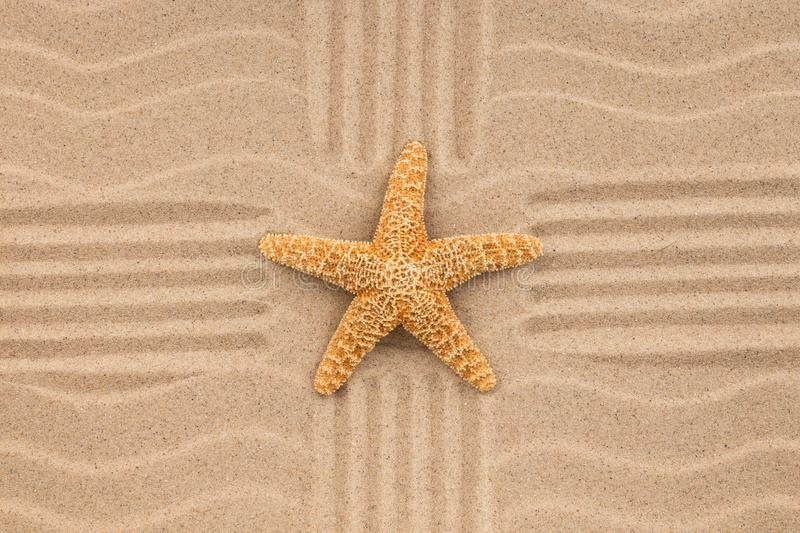 Download Summer Wallpaper Starfish On Sand Beach Background Stock Photo
