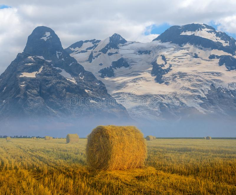 Summer wheat field after a harvest and mountain ridge stock photography