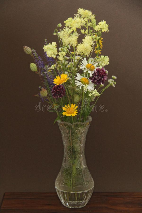 Summer wildflowers in a crystal vase. A beautiful summer bouquet on a dark background. Chamomile, wild onion, Veronica long-leaved royalty free stock photos
