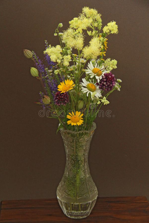 Summer wildflowers in a crystal vase. A beautiful summer bouquet on a dark background. Chamomile, wild onion, Veronica long-leaved stock images