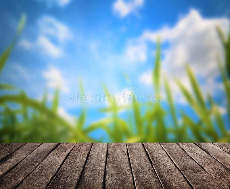 Download Summer and wooden plank stock photo. Image of planks - 83712984