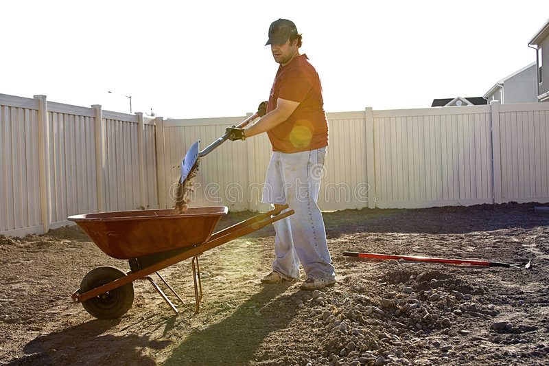 Summer Yard Work. A man works in his yard clearing the soil from rocks on a hot, sunny summer day stock photo