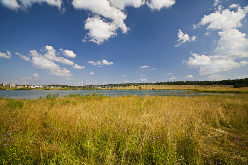 Download Summer Yellow  Meadow And Small Lake Stock Photo - Image of cloud, meadow: 15334210