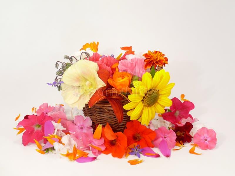 summerflowers royaltyfria foton
