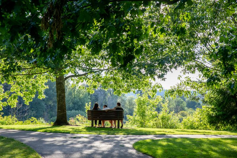 Summerlake City Park in Tigard, Oregon. Tigard, Oregon - June 29, 2019 : Summerlake City Park, Lakeside park featuring playgrounds & sports facilities stock photography