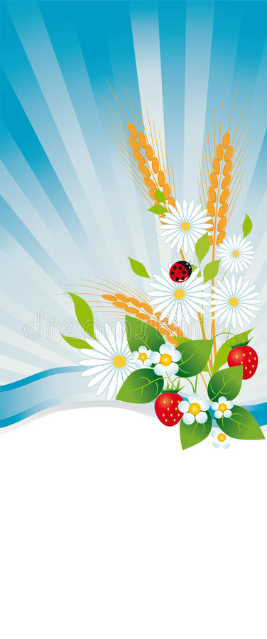 Download Summertime stock vector. Image of backgrounds, ladybug - 24298321