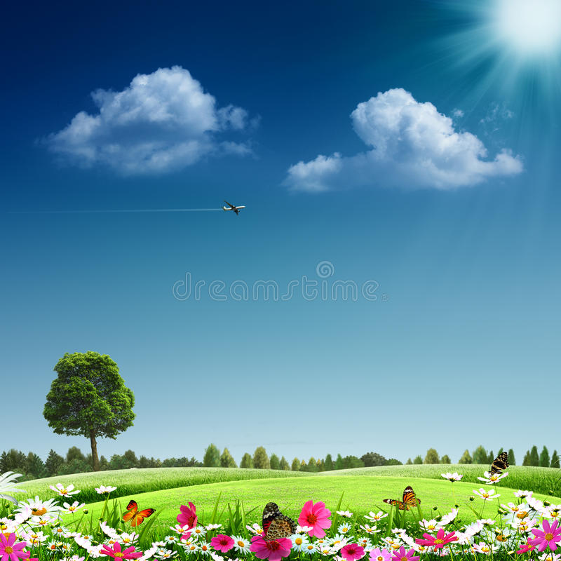 Free Summertime Royalty Free Stock Photography - 28239807