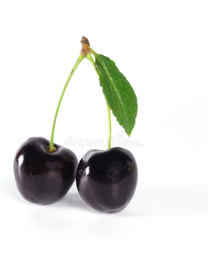 Summertime: black cherry royalty free stock photos