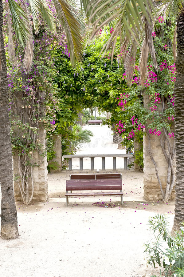 Download Summertime in park stock photo. Image of mediterranean - 21511152