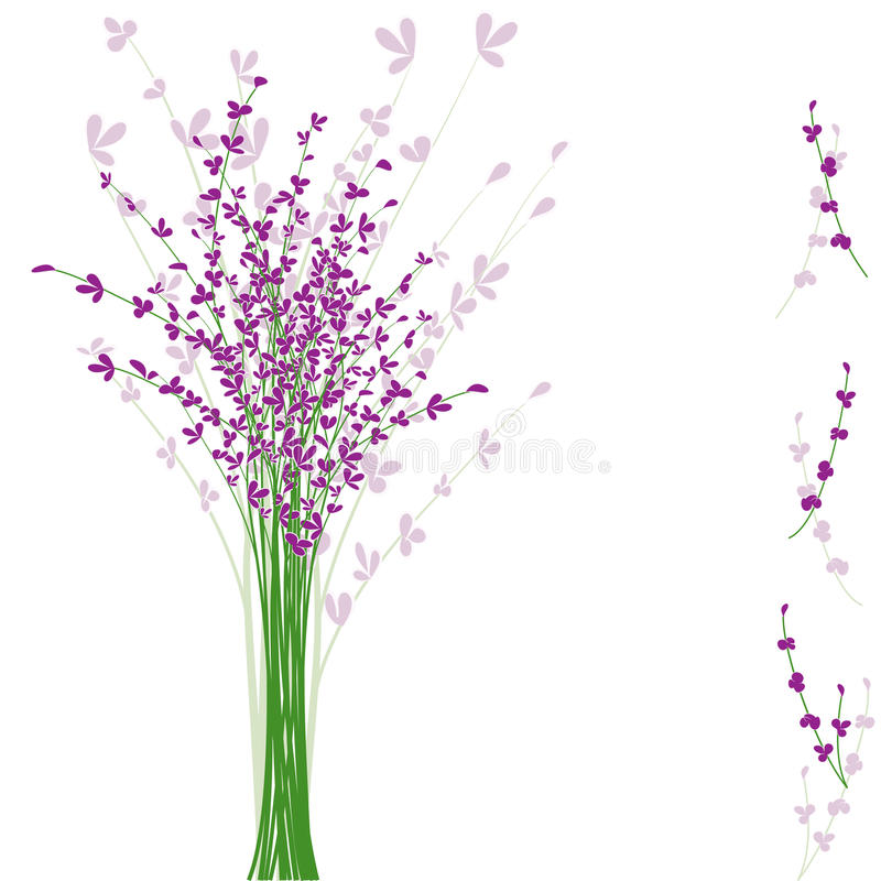 Download Summertime Purple Lavender Flower Stock Vector - Image: 20190207