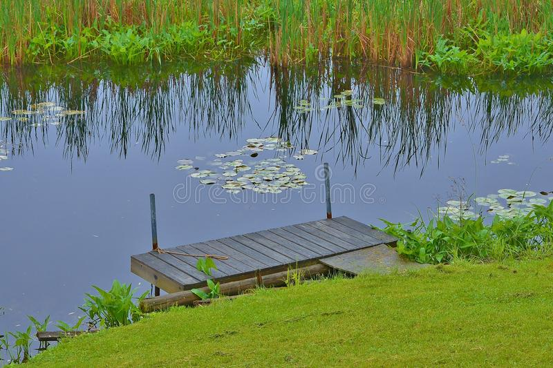Boat dock on sunny lake with lily pads royalty free stock photo
