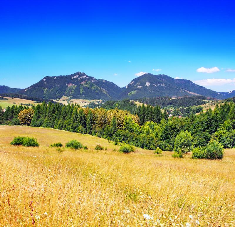 Summertime view of meadow with Chocsky hills, Pravnac and Lomy stock photos