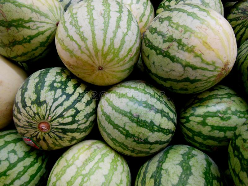 Summertime and Watermelon. Watermelon comes with summertime when the weather is hot and you need something to help cool you down royalty free stock photography