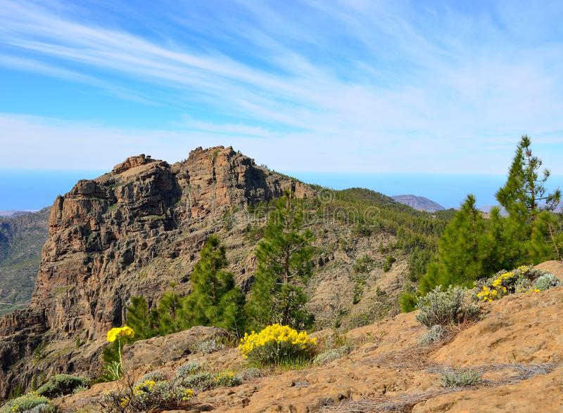 Summit of Gran canaria royalty free stock photos