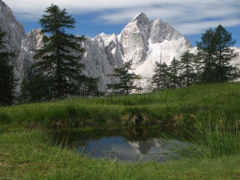 Summit of Jalovec - Triglav national park. royalty free stock image