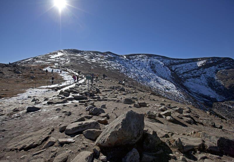Summit of pyramid mountain, jasper alberta stock images