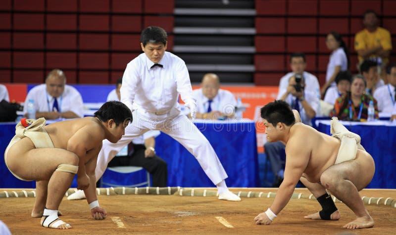 sumo стоковое изображение