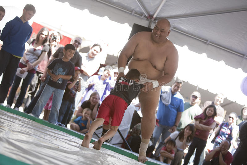 Sumo stock foto's