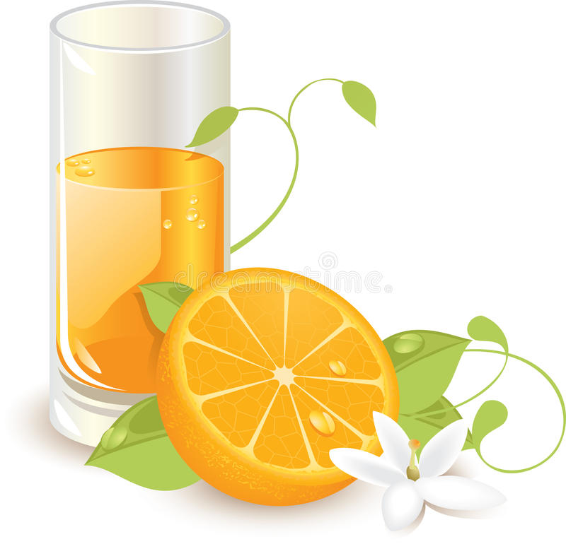 Sumo de laranja ilustração do vetor