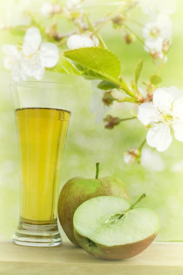 Sumo de maçã no jardim da mola foto de stock royalty free