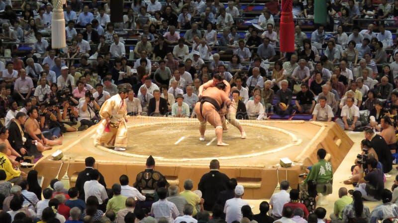 Sumo tournament in Nagoya. Sumo wrestlers in Aichi prefectural gymnasium in Nagoya in Japan royalty free stock photo