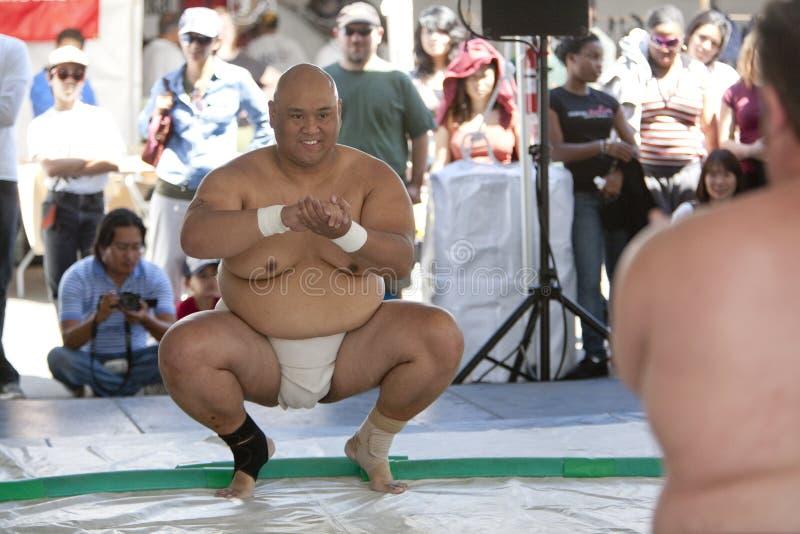 Sumo Wreslters royalty-vrije stock foto's