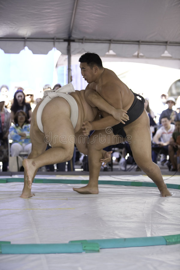 Free Sumo Wrestlers 18 Royalty Free Stock Photos - 4534528