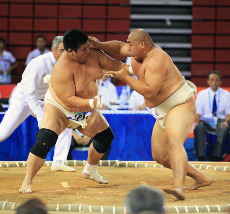 Sumo wrestling in action stock photo