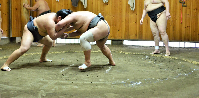 Sumo zapaśnicy trenuje w sumo stajenkach fotografia stock
