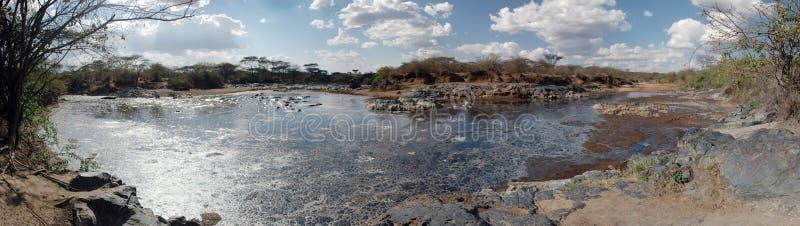 Sumpf im Serengeti - panoramische Ansicht stockfoto