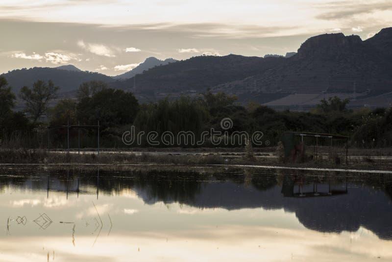 Sumpf in Valencia lizenzfreie stockbilder