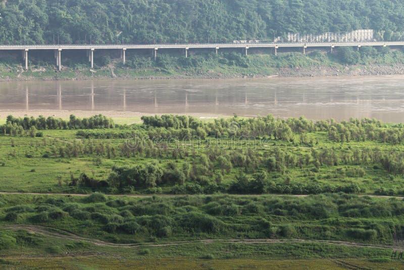 Sumpfgebiet stockfoto