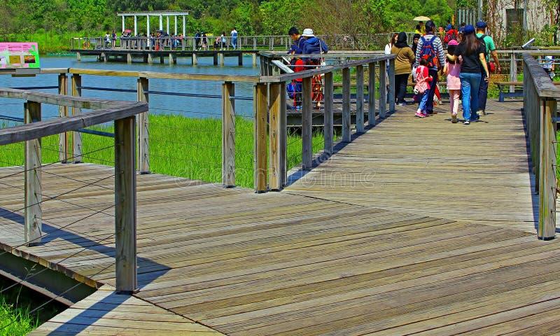 Download Sumpfgebietpark, Hong Kong redaktionelles stockbild. Bild von asien - 90230589