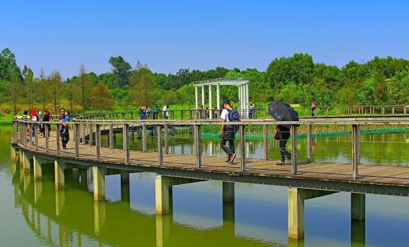Download Sumpfgebietparkgehweg, Hong Kong Redaktionelles Foto - Bild von umgebung, brücke: 90230656