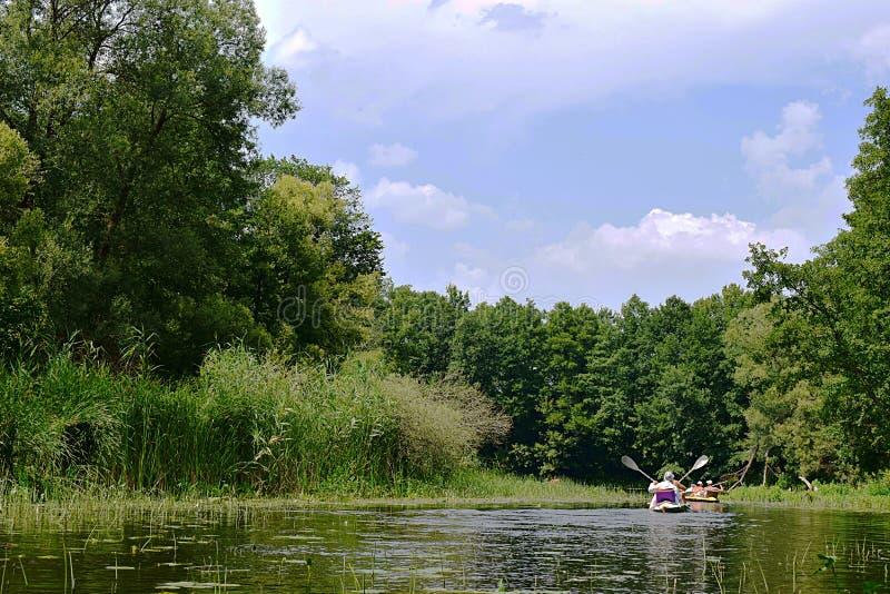 Sumy region, Ukraine, August, 2019. Vorskla river, tourists on a kayak. Sumy region, Ukraine, August, 2019. Vorskla river, tourists swim on the river in kayaks royalty free stock photo