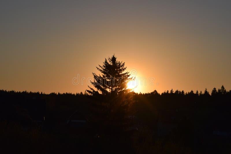 Sun on the air royalty free stock photos