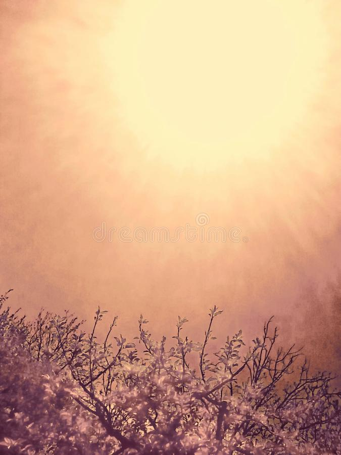 Sun-Antrieb lizenzfreie stockfotografie