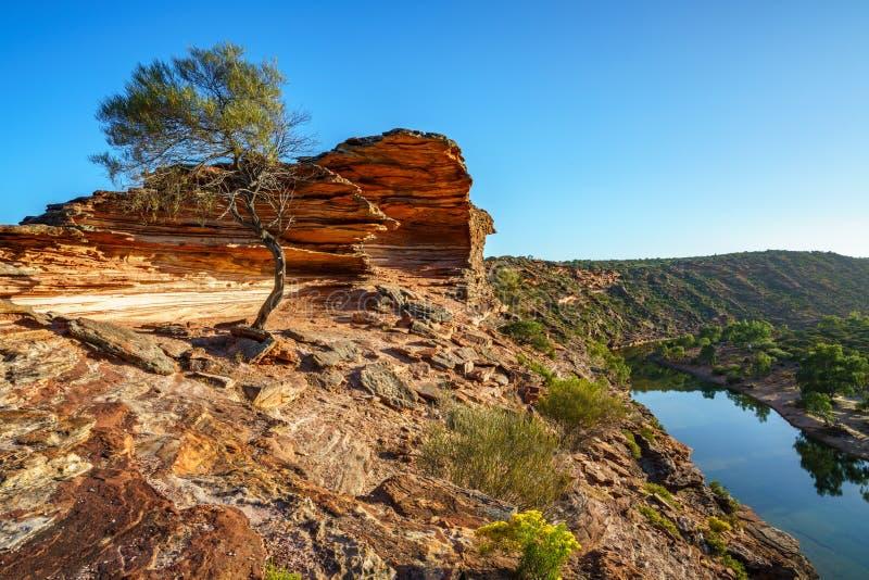 Sun au-dessus de traînée de boucle de fenêtre de natures, parc national de kalbarri, Australie occidentale 5 photographie stock
