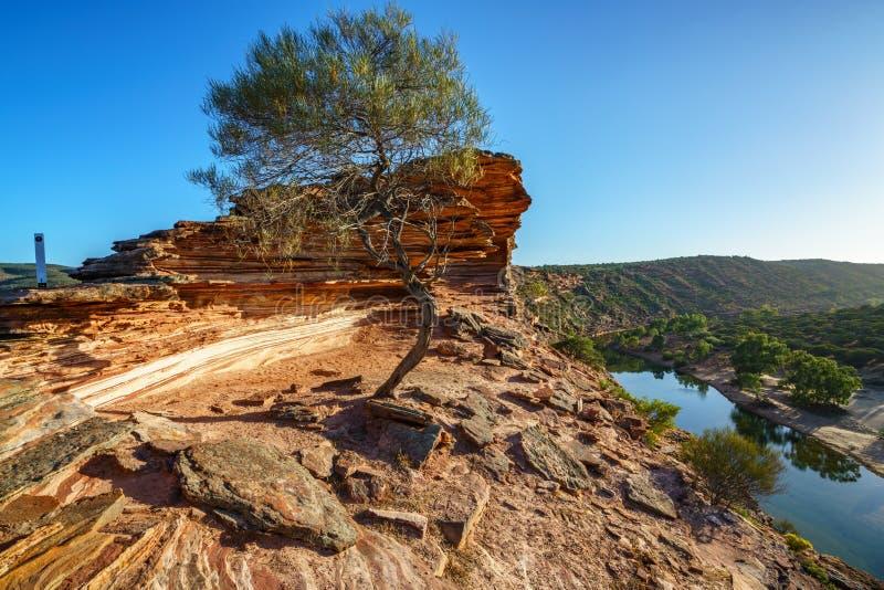 Sun au-dessus de traînée de boucle de fenêtre de natures, parc national de kalbarri, Australie occidentale 7 photographie stock libre de droits