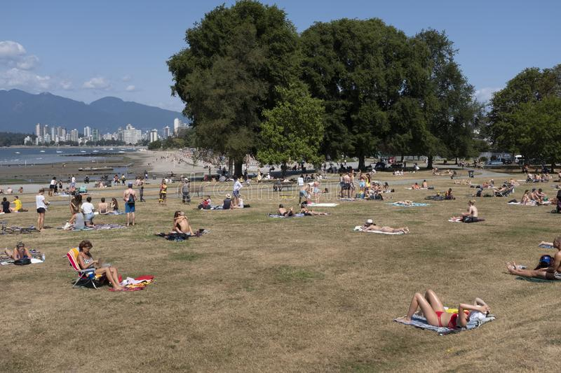 Sun bathers on the grass at Kitsilano beach or `Kits` beach in Vancouver. Sun bathers soak up the sun on the grassed area royalty free stock photos